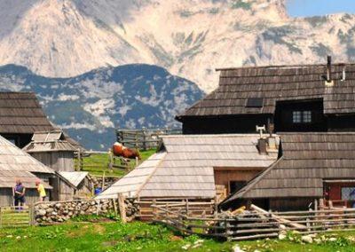 AGOST  Alps Julians